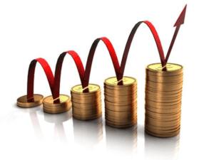 čestné prohlášení o výši příjmu